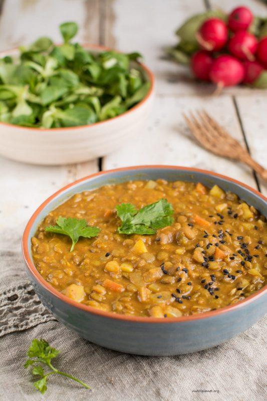 stew-green-lentil-tomato-3487-editprocessed-1320x1980-533x800